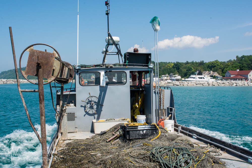 Boat Leland Harbor Swim Monday-7412