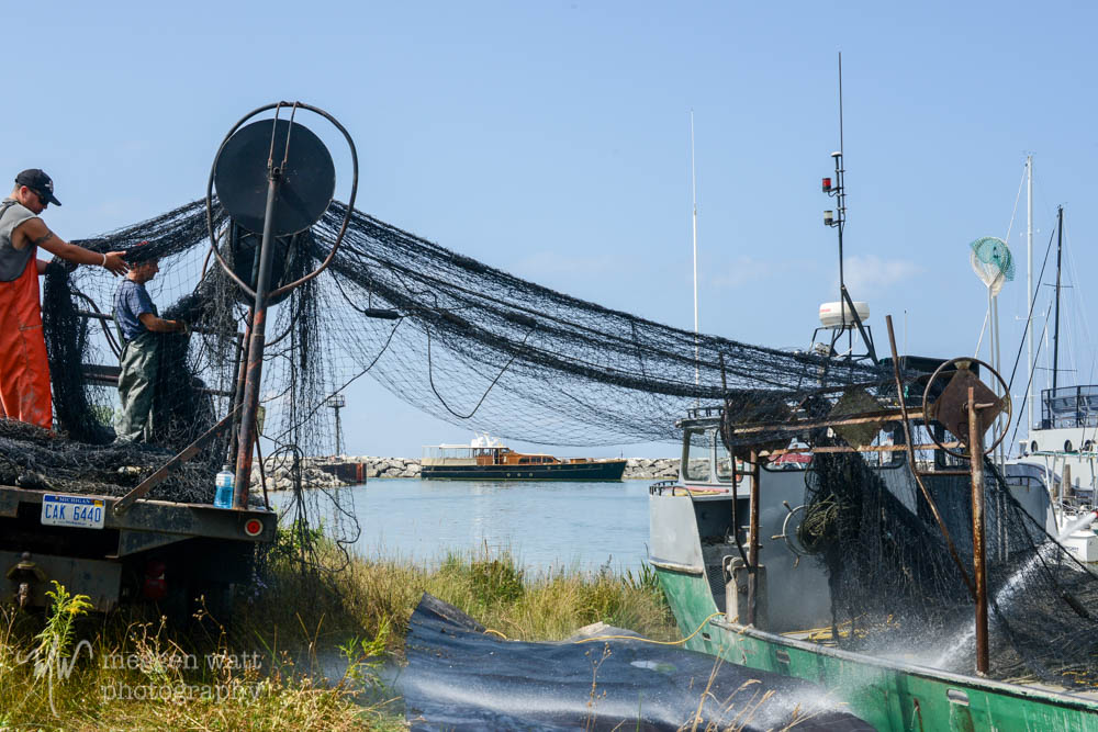 Nets And A Yacht-5587