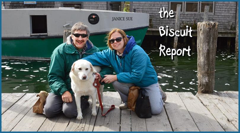 Biscuit10-19-15