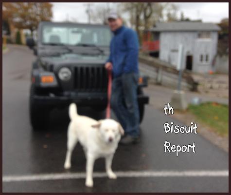 Biscuit10-29-15