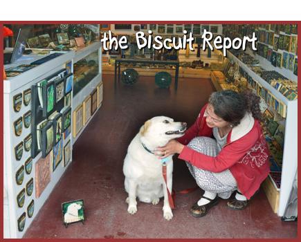 Biscuit6-14-15[1]