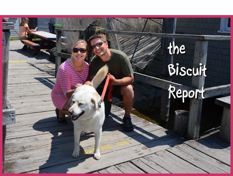 Biscuit6-24-15