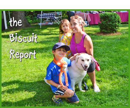 Biscuit7-12-15
