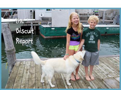Biscuit7-17-15