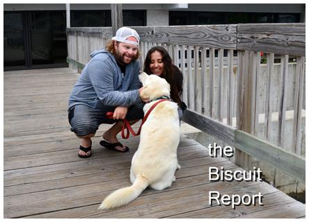 Biscuit7-6-14[1]