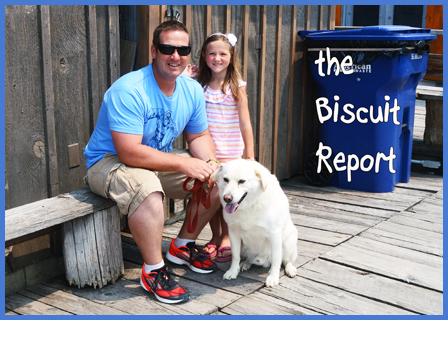 Biscuit7-6-151