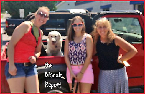 Biscuit8-15-15