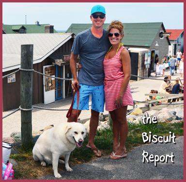 Biscuit8-16-15