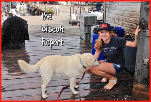 Biscuit8-19-15