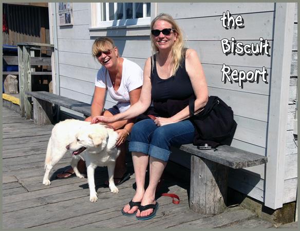 Biscuit9-17-2015