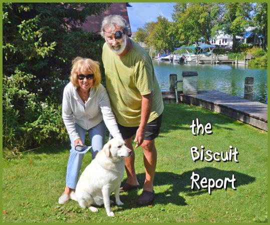 Biscuit9-22-2015