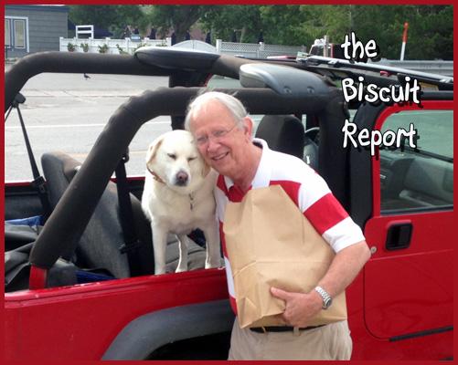 Biscuit9-4-2015