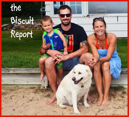 Biscuit9-6-2015