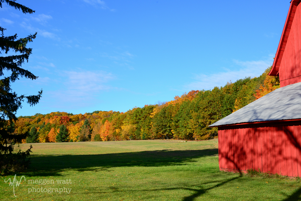 Fall Color Barn-8638