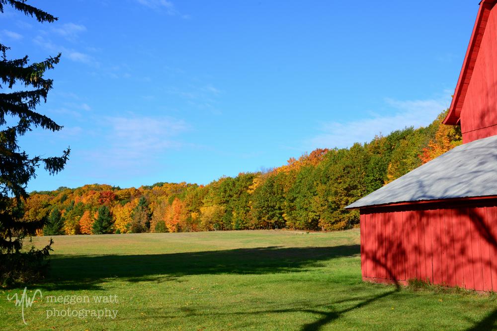 Fall Color Barn-8638