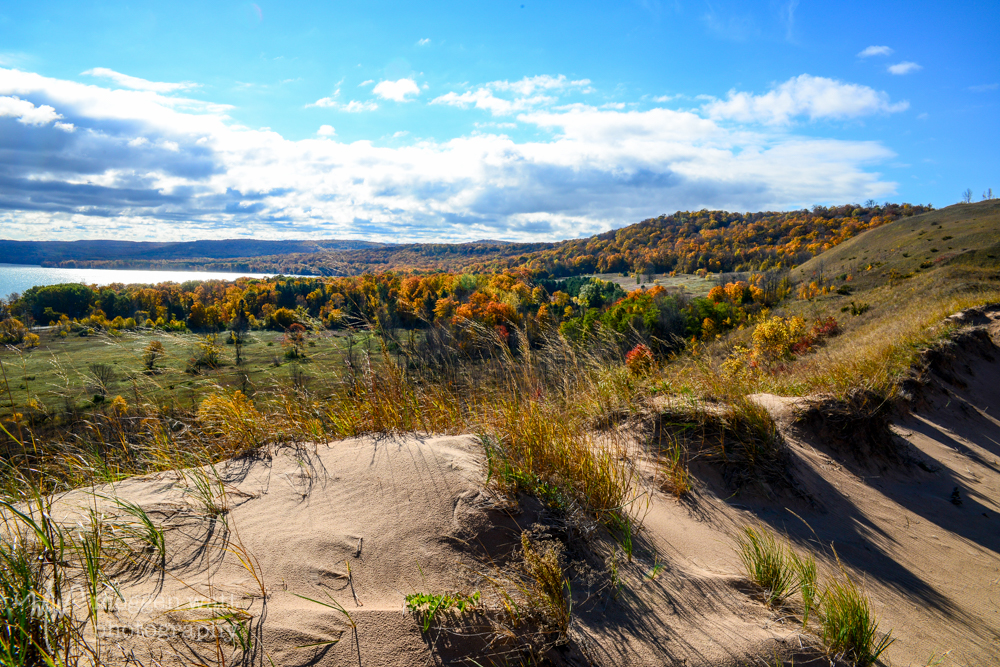 Fall Color Dune1-8684