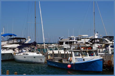 Harbor7-30-15