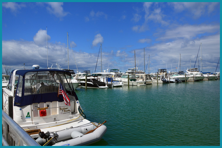 Harbor8-11-15