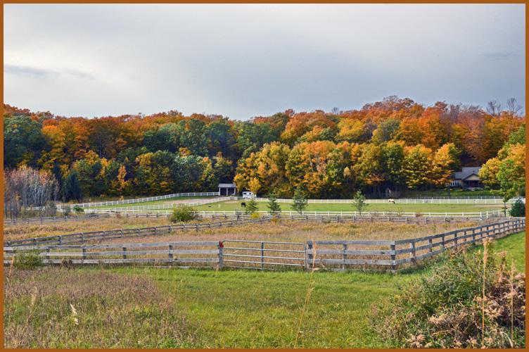Ranch10-23-15